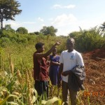 I want to use all my land on sorghum next season, a farmer tells us