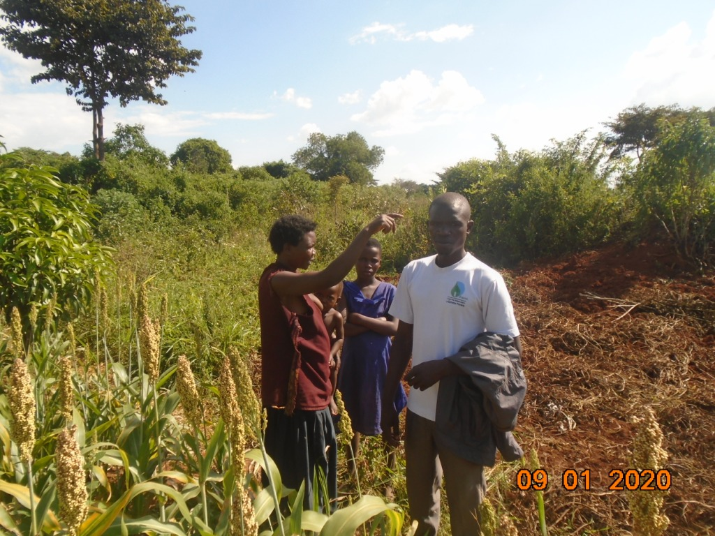 I want to use all my land on sorghum next season, a farmer tells us