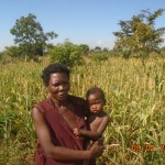 I want to grow even more sorghum next season, a farmer tells us