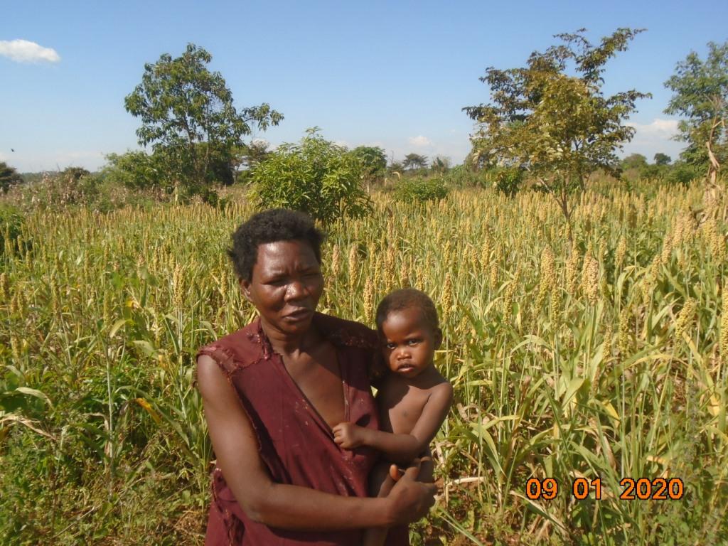 I want to grow even more sorghum next season, a farmer tells us