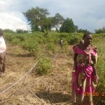 Surveying a prospective sorghum farmer's land